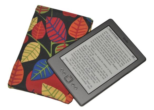 Kindle med fodral (Foto: Mr J)